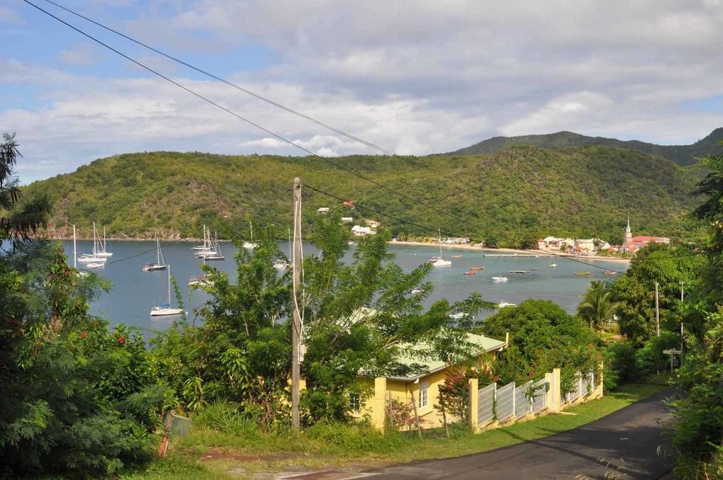 Martinique : Anses d'Arlet