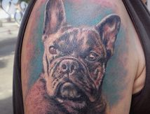 Tatouage Portrait Boule Dogue