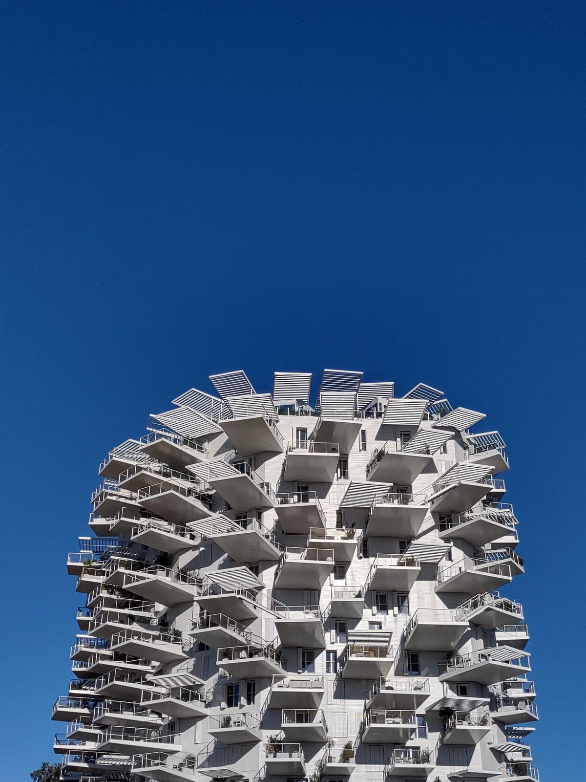 Photographes de l'immeuble arbre blanc octobre 2021 Montpellier, France