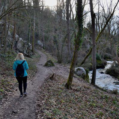 Promenade hivernale le long de La Charpassonne dans la Loire...
