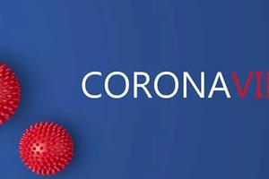 les INFOS de la Fédération Internationale du Diabète sur le Cor.Vir.
