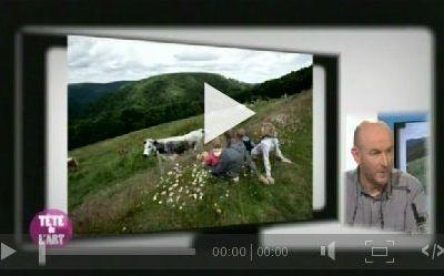 Le photographe Michel Laurent, vidéo, la tête de l'Art