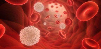 Système Immunitaire (Introduction)