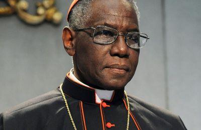 Cardinal Sarah : « La défense de l'immigration repose sur une mauvaise interprétation des Évangiles par les prêtres et les évêques »