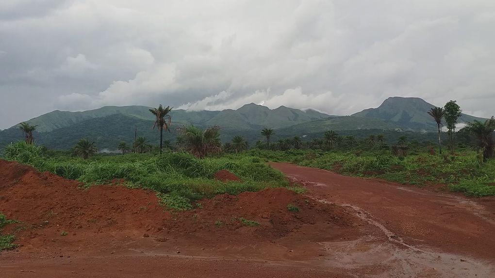 Petit Futé Tour GUINEE 2019