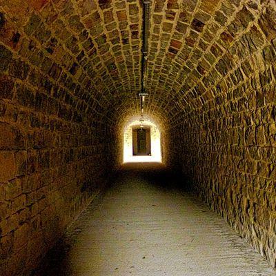 Samedi 7 novembre 2020 - Les couloirs du Temps - Auxonne - ANNULE