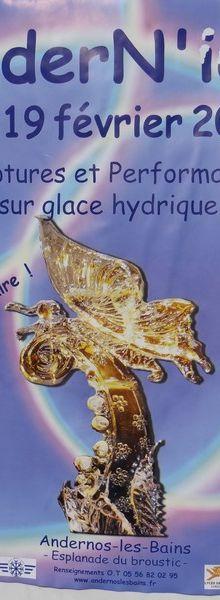 20ème concours de sculpture sur glace à Andernos : quelques oeuvres...