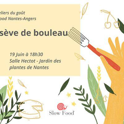 Atelier du goût Slow Food sur la sève de bouleau - mercredi 19 juin
