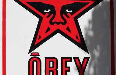 Exposition Street Art: Shepard FAIREY « Facing the Giant : 3 Decades of Dissent »