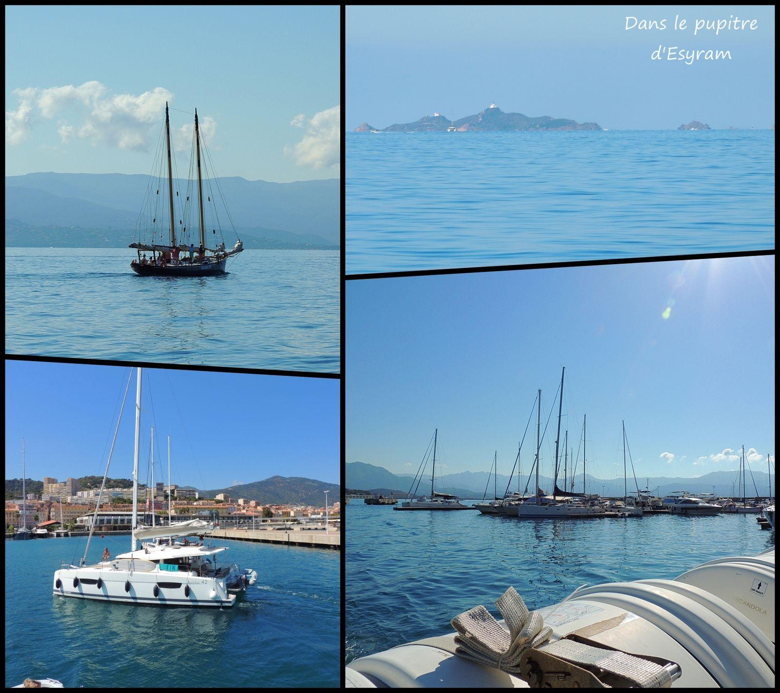 Les triplés sur l'Île de beauté (2) Ajaccio