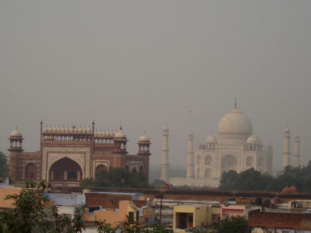Le Taj Mahal dans toute sa splendeur