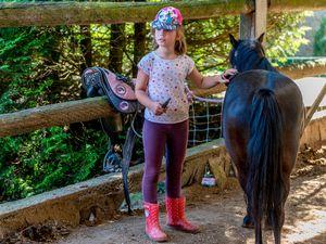 Initiation à l'équitation (18-22 juillet)