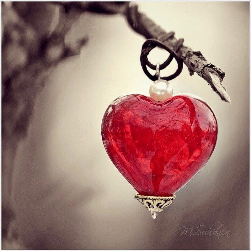 Haut les cœurs aimants 💙❤️💚