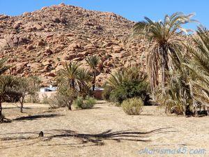 Tafraoute (Maroc en camping-car)