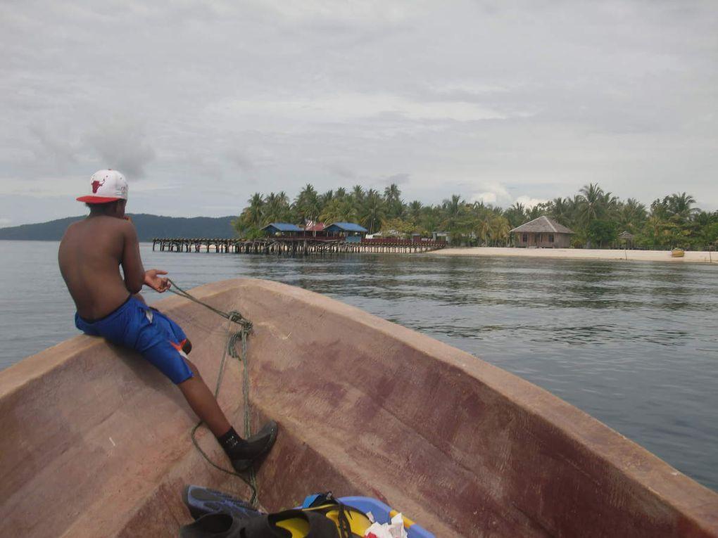 Départ de Sorong, avec son riche marché aux poissons, une plage au nord est de Sorong, puis vedet te pour l'archipel des Raja Ampat, de là on reprend     un canot pour l'île de Kri, le soir. Yenkoranu guest   house sur l'île de Kri, balade dans d'autres îles de l 'archipel ( Arborek et son perroquet ). Ce qu'il y a de plus beau ? Le tombant, bien sûr...