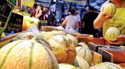 De bons melons, enfin ?