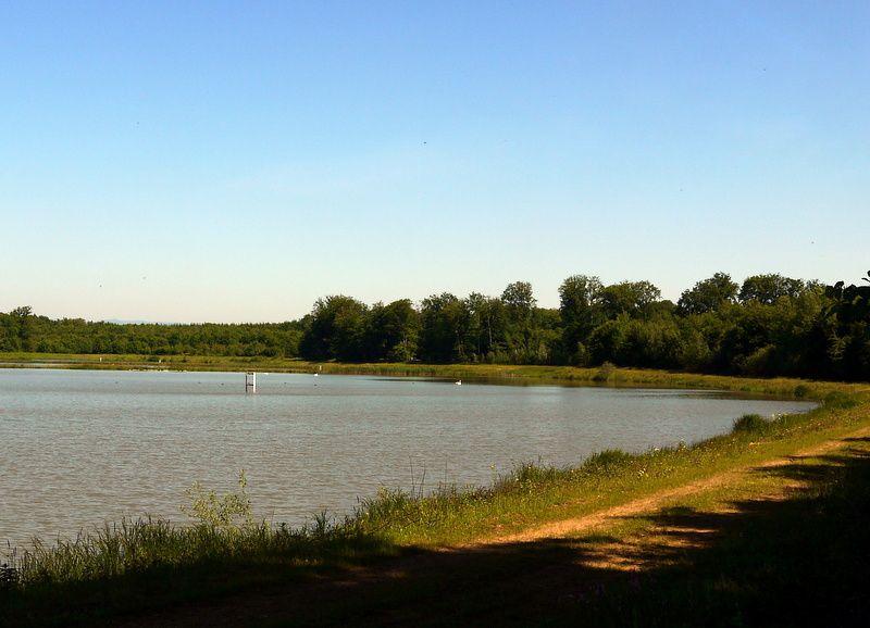 Balade autour des étangs de Suarce et Boron