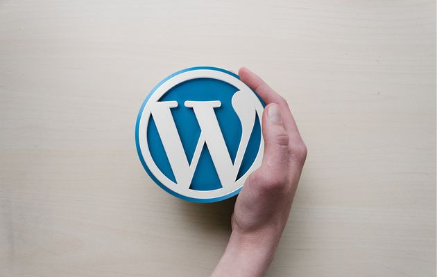 5 Ways to Optimize Your WordPress Website For Business Growth