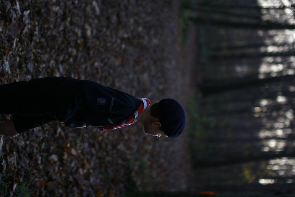 Photo Sortie Loups Novembre 2012