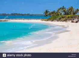 Voudriez-vous passer 2 mois aux Bahamas pour relancer le tourisme ?