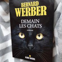 """""""Demain les chats"""" - Bernard Werber [livre]"""