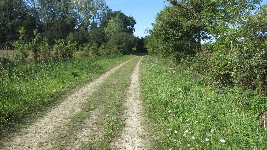Etape 4: Plevenon - Pledran