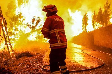 Notre maison brûle