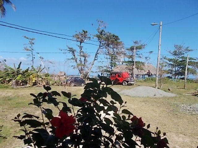 plage, langoustes..camarones de rio ..le trajet .....la Havane.....un poete. le prado....le tout en desordre....