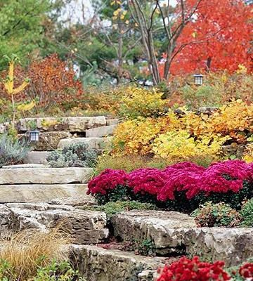 Gardening And Landscaping:  How To Find Bargains On The Internet