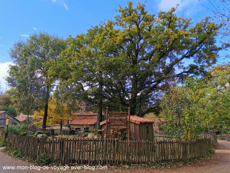 La forêt vendéenne et sa parure d'automne (octobre 2020, images personnelles)