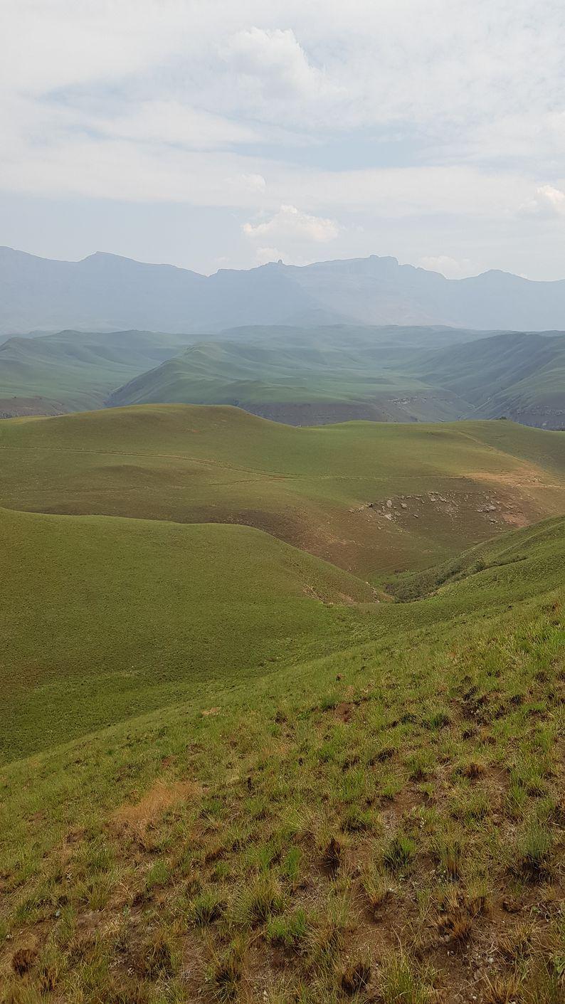Un peu frustrés au Drakensberg