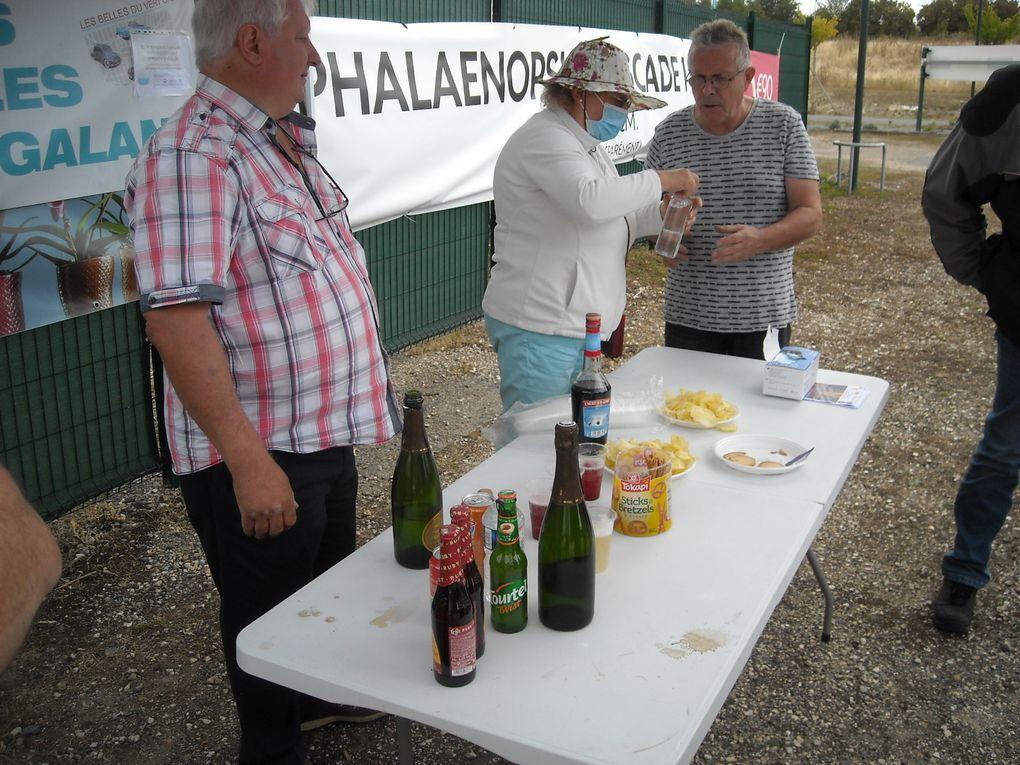 Voitures anciennes chez Truffaut Villeparisis 06/09/2020