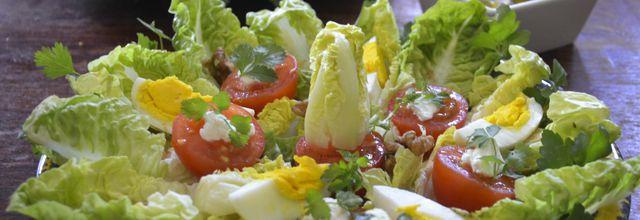 La sucrine en salade