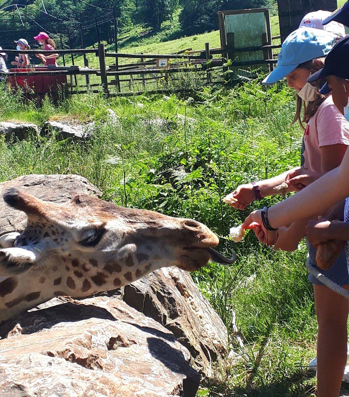 ME En Gach : Sortie CLAS au Zoo