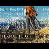 Internal Flight - Estas Tonne 2016 (Rus) full version