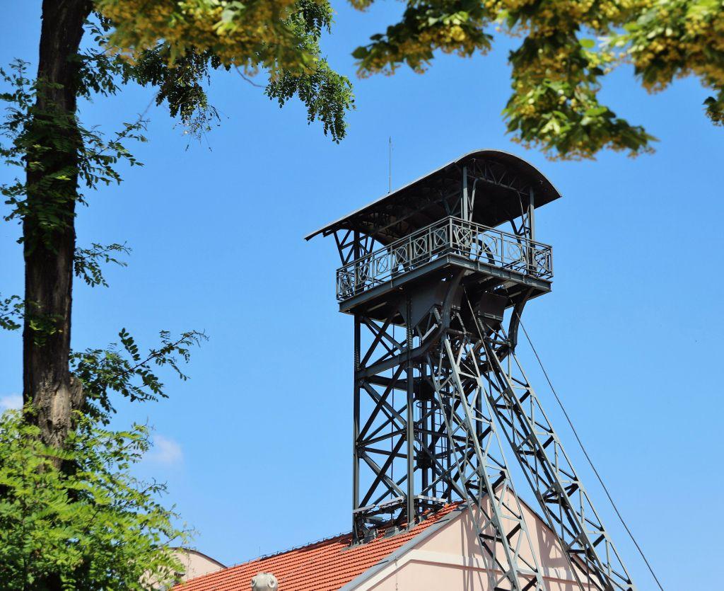 Mine de sel Wieliczka Pologne