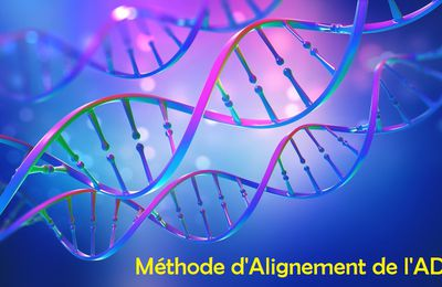 Initiation à la Méthode d'Alignement de l'ADN