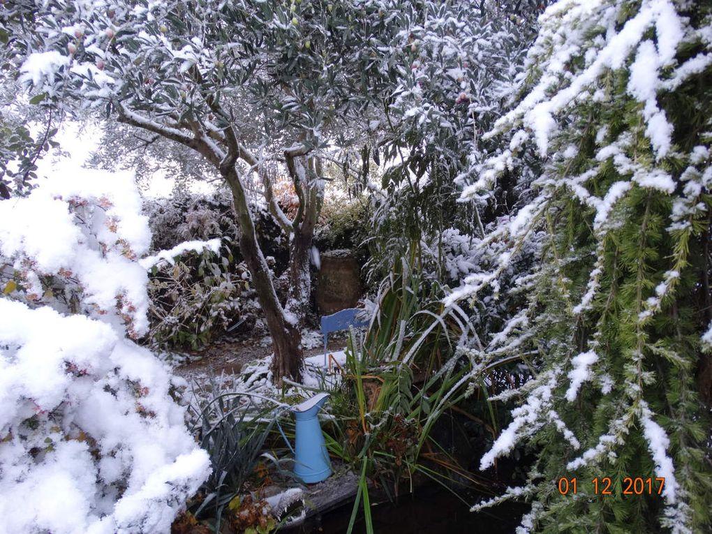 Le jardin Le Clos fleuri en décembre .....sous un manteau blanc