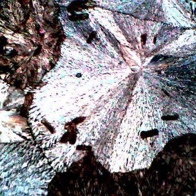 Influence de la vitesse de cristallisation sur la taille des cristaux de vanilline