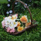 plaisir-jardin.com