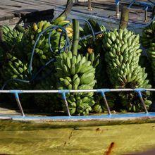 Sur les pontons de Banda Neira, Moluques, Indonésie.