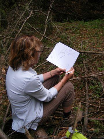 Sur les chemins de Stevenson, ateliers d'écriture et croquis en pleine nature : 5 jours de créativité compilés dans un album réalisé sur place.