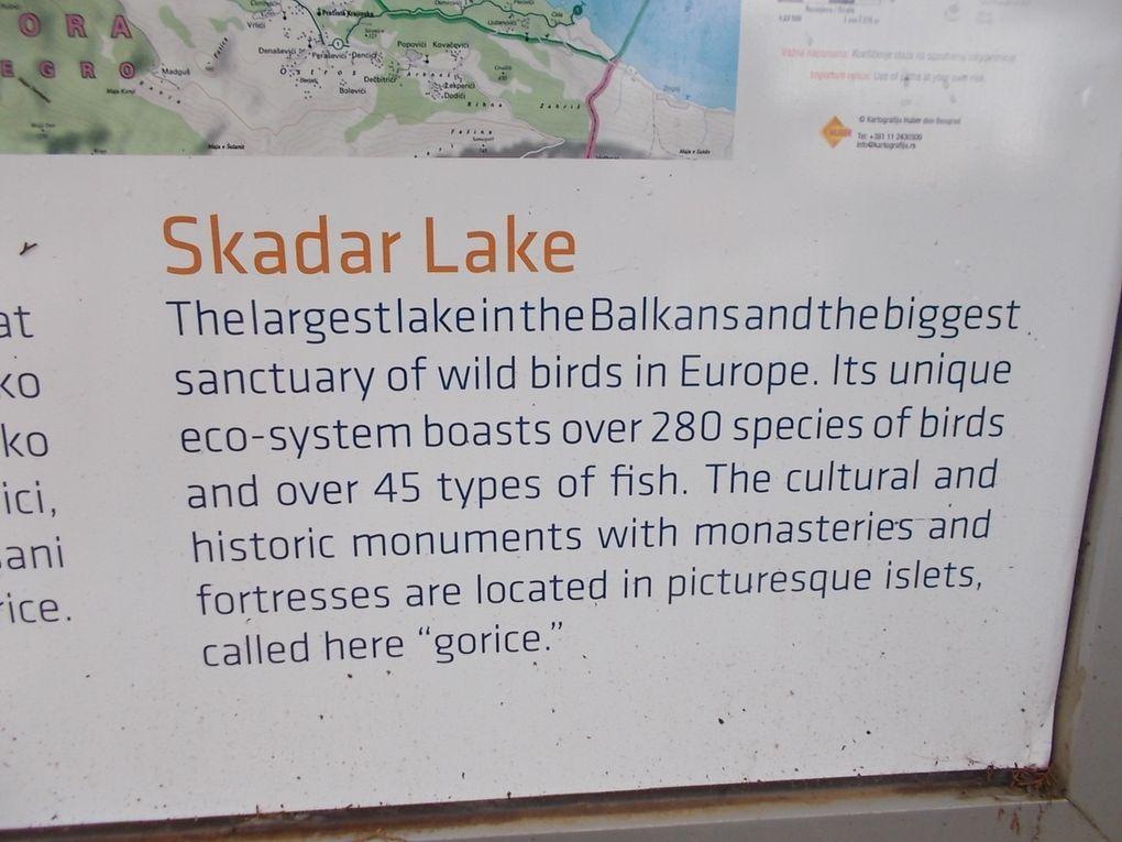 on ne se lasse pas de STEVI STEFAN....le lac Skadar , sa forteresse à Virpazar, et les merveilleuses bouches de Kotor et ses nombreux martins-pêcheurs