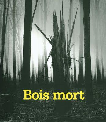 Bois mort : men of constant sorrow