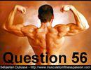 Peut-on travailler le même muscle tous les jours ? Par Sébastien Dubusse, blog musculationfitnesspassion