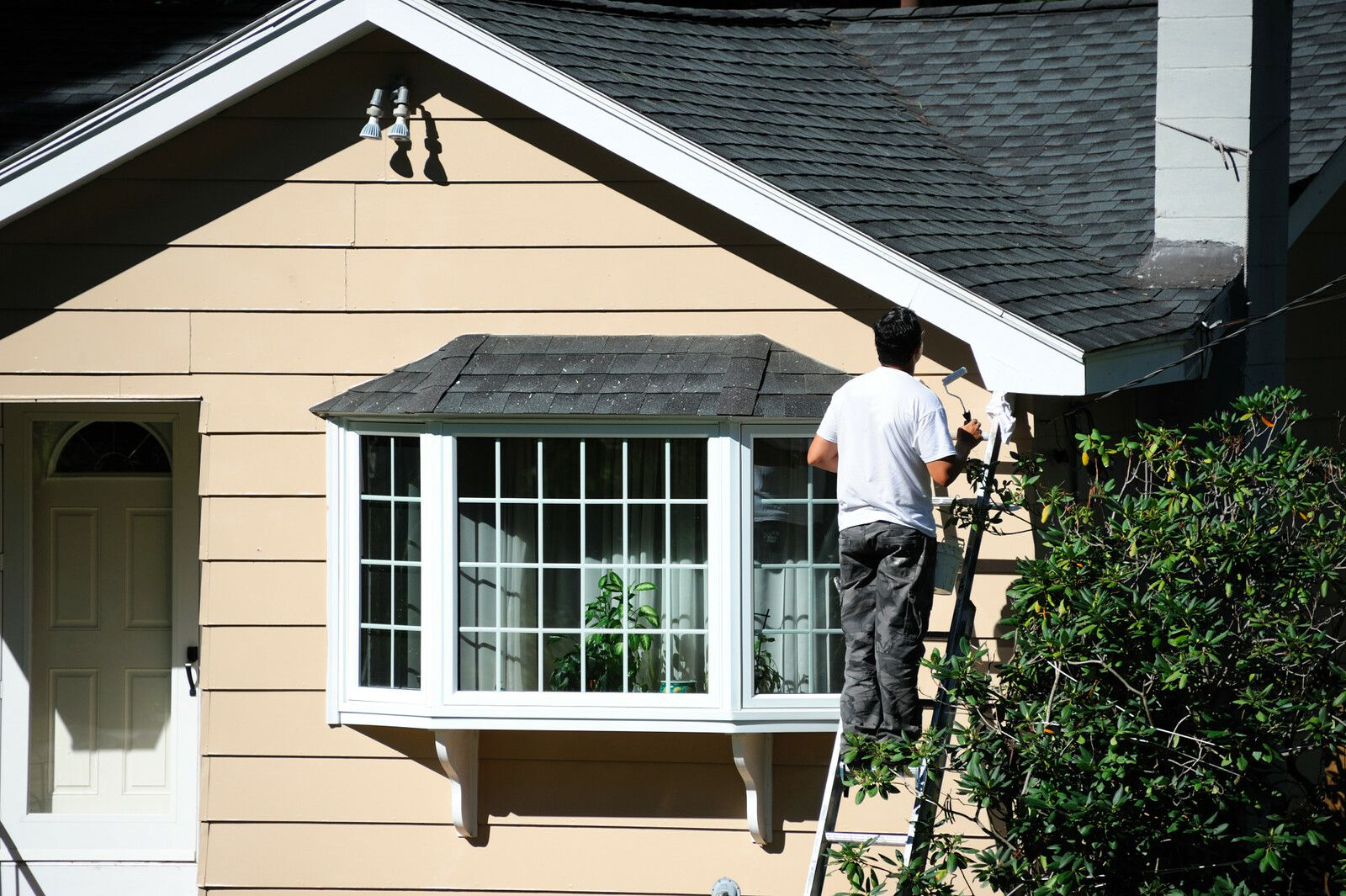 Industrial Roofing Contractors Offer Plastic Home Siding Substitute Solutions