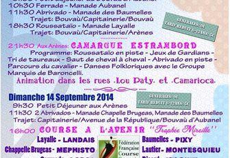 Saintes Maries de la Mer: Camargue Estrambord