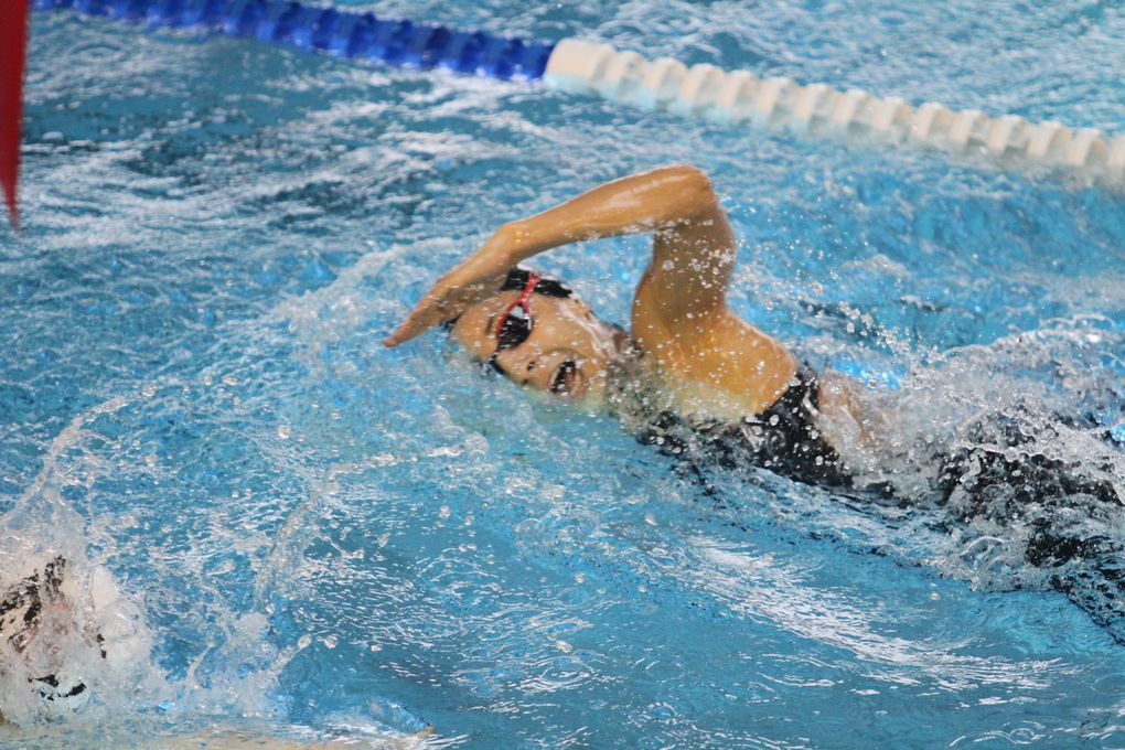 Les images sportives de cette fin de semaine  - Photos : © Sports Vénissians et CMOV Gym