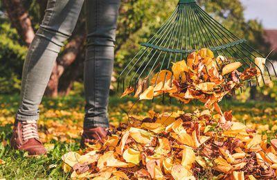 Savourer les joies de l'automne au jardin