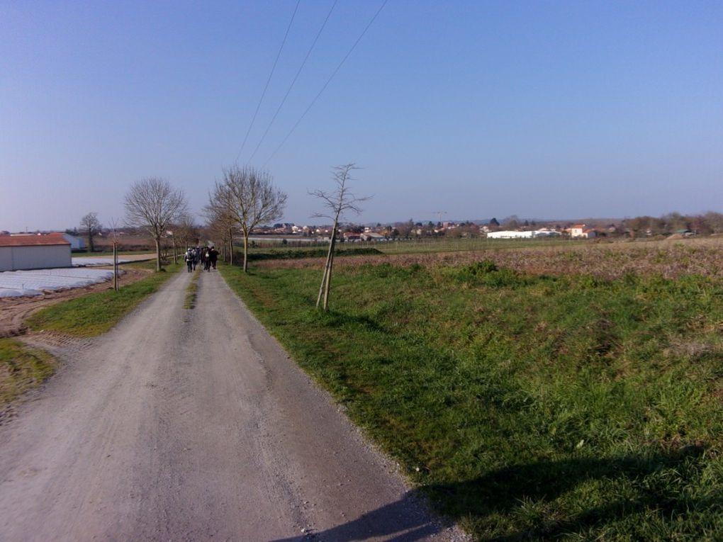 """Les """"12 Km"""" à Saint Julien de Concelles"""